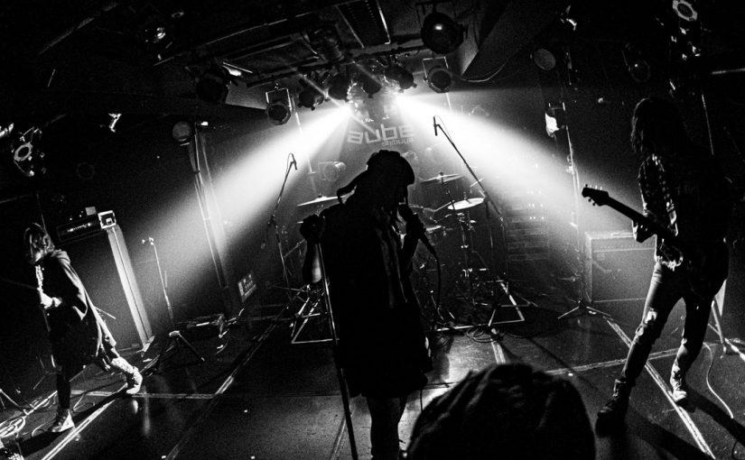 主催イベント「しばいぬ The NATION! Festival Vol.2」ありがとうございました!!